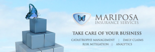 Mariposa Insurance Services | Valrico